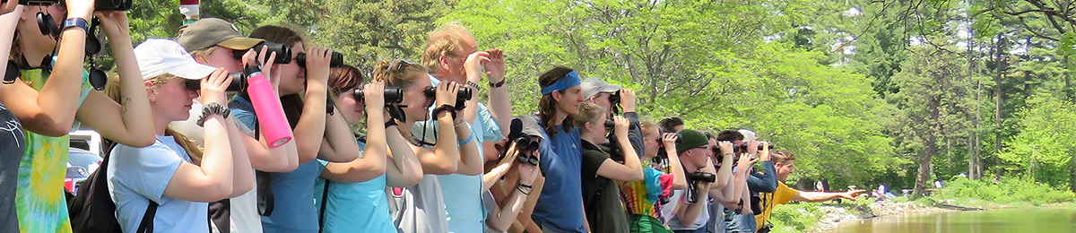 Line of students at a park looking through binoculars