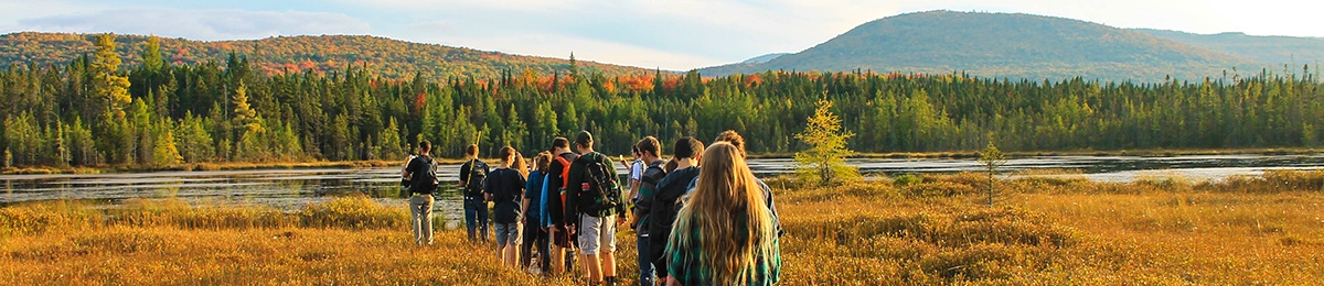 Students on a boardwalk on bog in northern Vermont