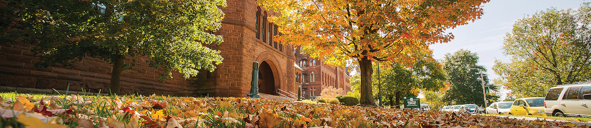 Fall leaves on the ground in front of Billings Hall