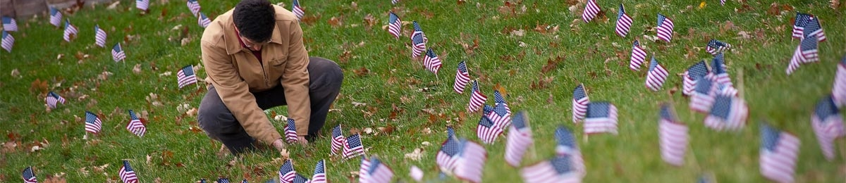 mini flags on campus marking veterans day