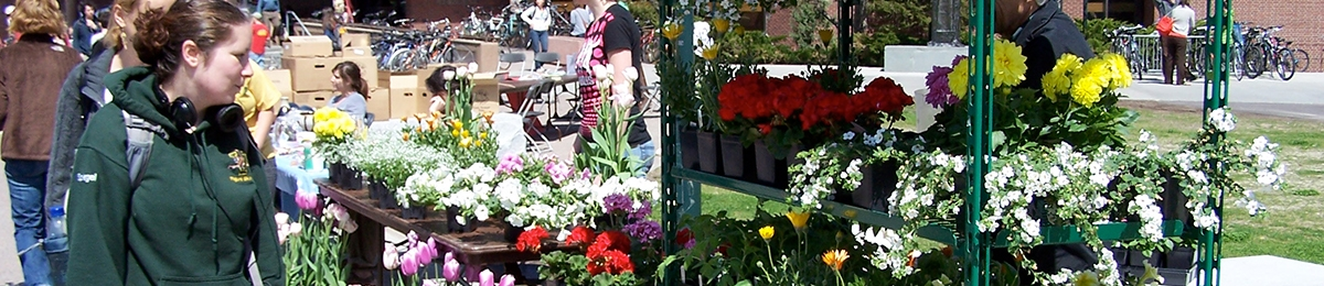 A student looks at flowers for purchase at the farmers market