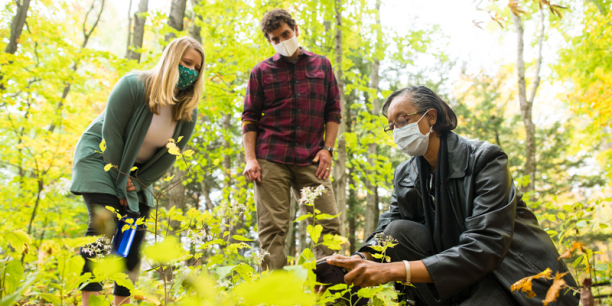 Lesley-Ann Dupigny-Giroux examines foliage while Gillian Galford and Joshua Faulkner look on