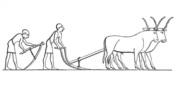 egyptian plow