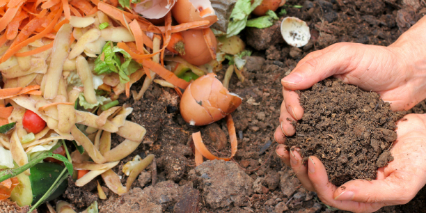 hand holding composted soil with food scraps in the background