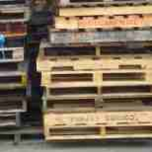 Wood and wood pallets