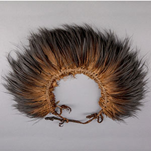 Image of a headdress from Papua New Guinea