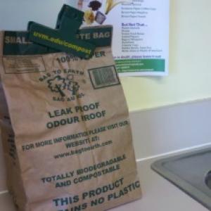 Small brown food waste bag