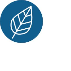 UVM_Careers-Environment