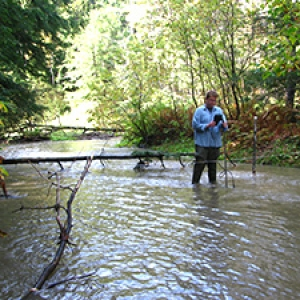 Researcher in stream with equipment