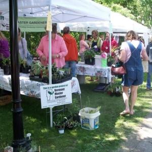 Bennington Plant Sale