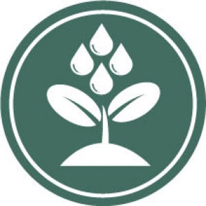 Icon representing individual counseling with a plant being watered
