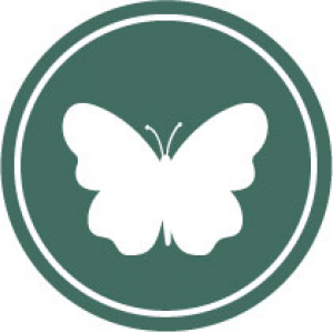 Icon of a white butterfly on a dark green background