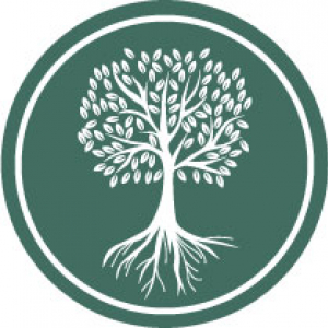 image of tree icon representing case management that has many branches and roots