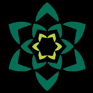 green succulent-like line image