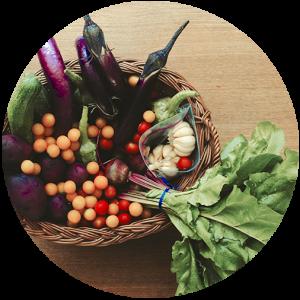 basket of local food (tomatoes, lettuce, radish)