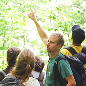 Instructor pointing out something in tree tops to students