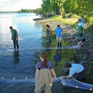 Ellen Marsden with students using net in lake