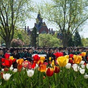 Tulips bloom in front of UVM graduates on commencement day