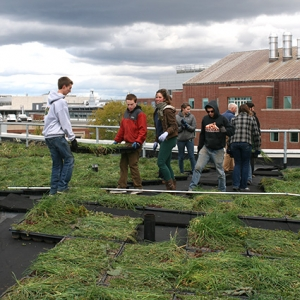 Students and faculty build the Aiken Center green roof