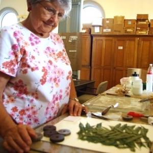 Hilda mounting a specimen