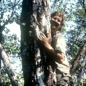 Zika climbing a tree