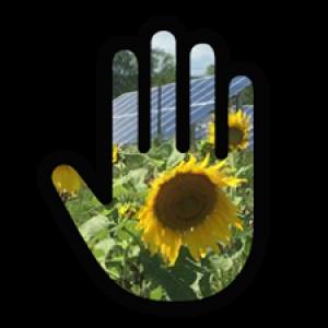Pollinator Pledge
