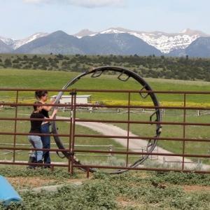 Student doing farm chores