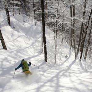 a backcountry skier in the trees