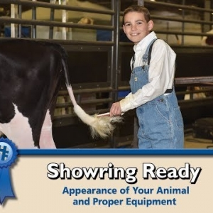 Showring Ready: Appearance of your animal and proper equipment