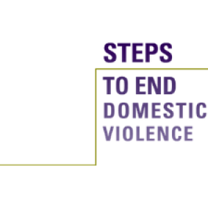 Steps to End Domestic Violence