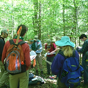 Students in northern hardwood forest