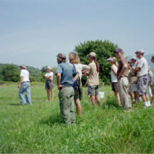 image description:group of people in a field looking off towards the left, on green grass and under a blue sky