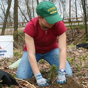 Student planting tree at city park