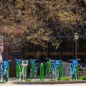 bikes parked in bike rack