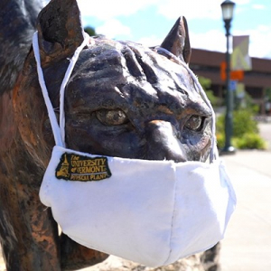 UVM catamount mascot with a mask