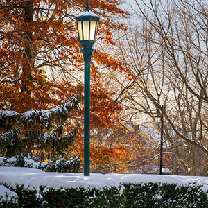 Lightpost and trees in winter, University of Vermont campus
