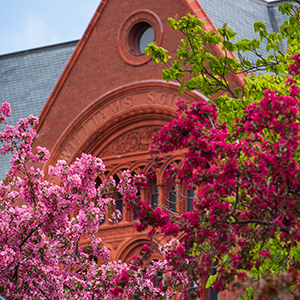 Williams Hall at the University of Vermont with spring trees in foreground