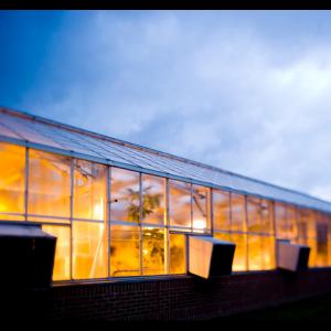 UVM greenhouse