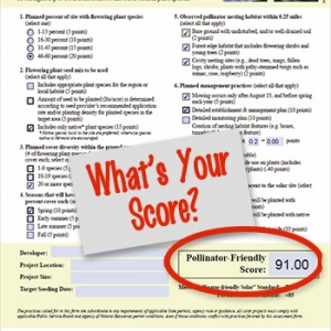 Whats Your Score