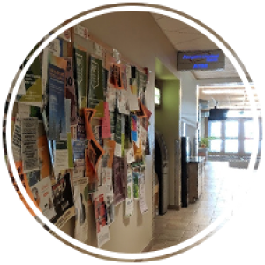 a bulletin board display full of posters in a hallway