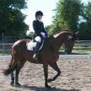Student riding her horse in competition