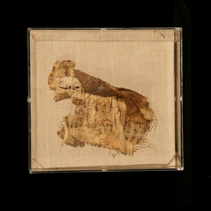 Papyrus from the Ancient Egypt Kit