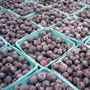 farmers market blueberries