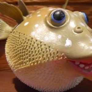 """Fugie"" the blowfish, an informal mascot for the Interfaith Center"