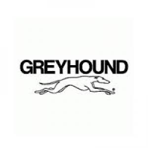 the greyhound bus logo