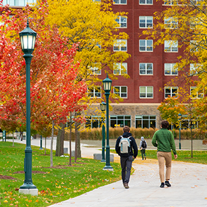 students walk on campus beside fall trees