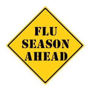 Street sign reading flu season ahead