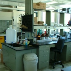 view of the lab