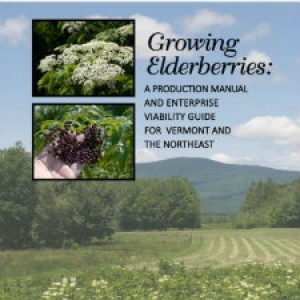 Download the Elderberry Production Manual