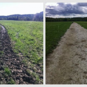 Laneways before and after installation